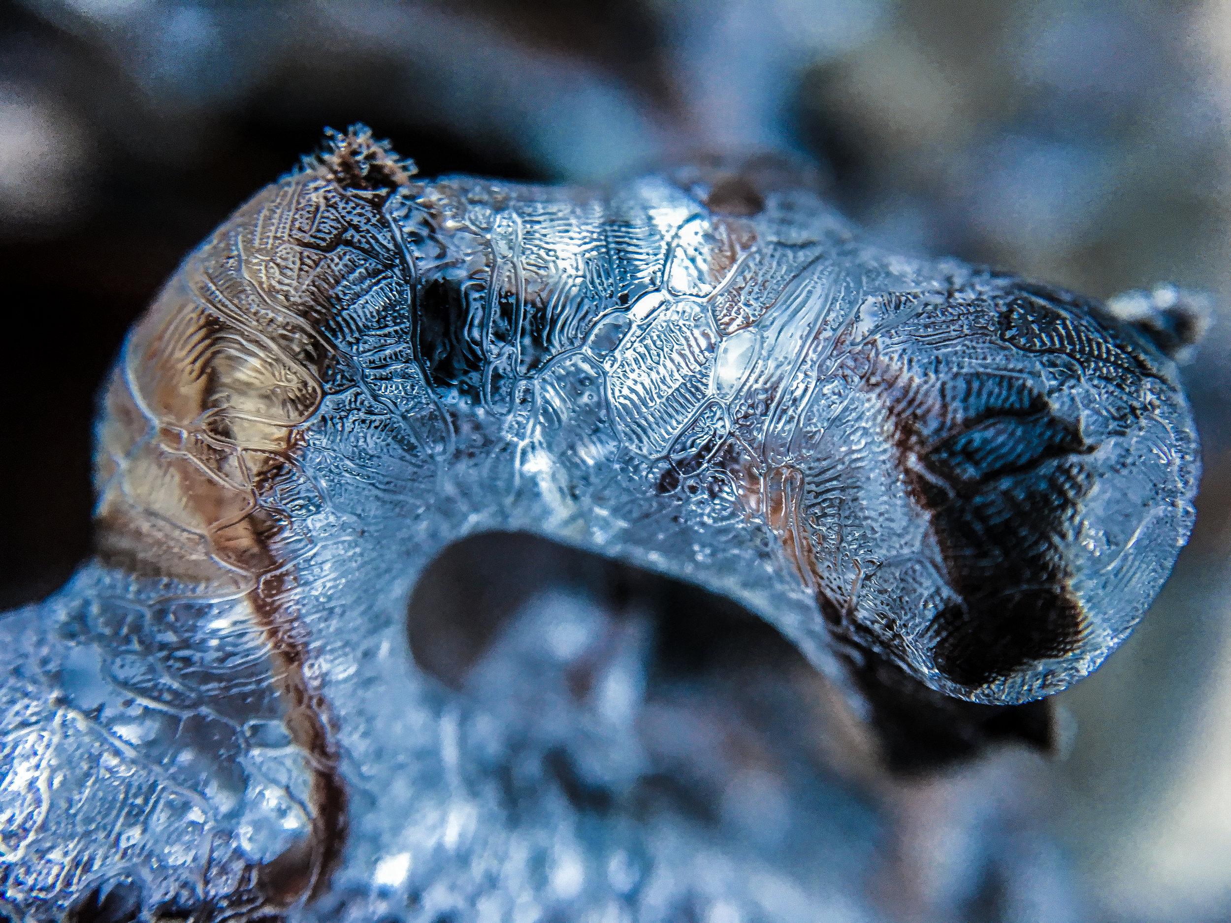Icestorm2017-11.jpg