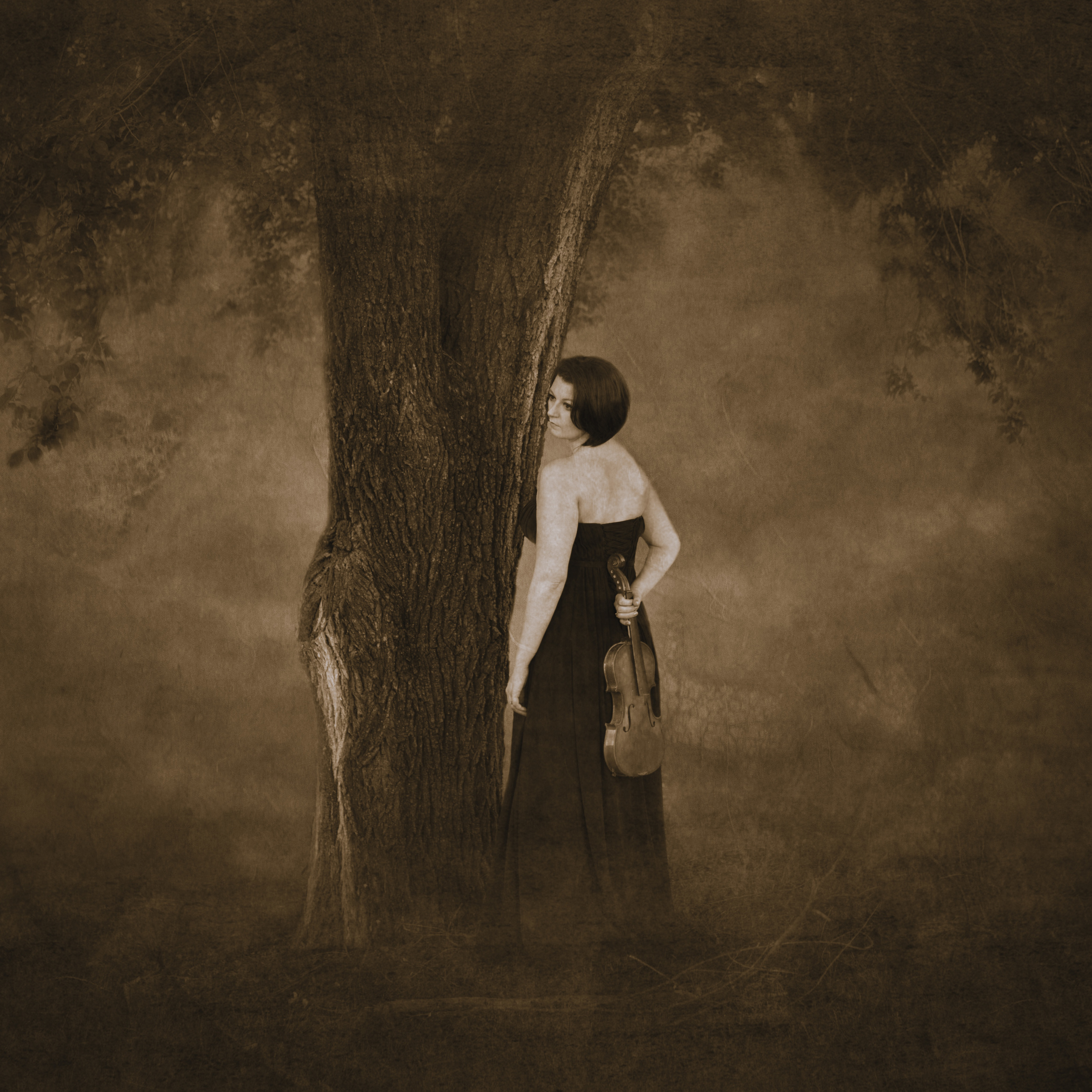 The Heather Tree
