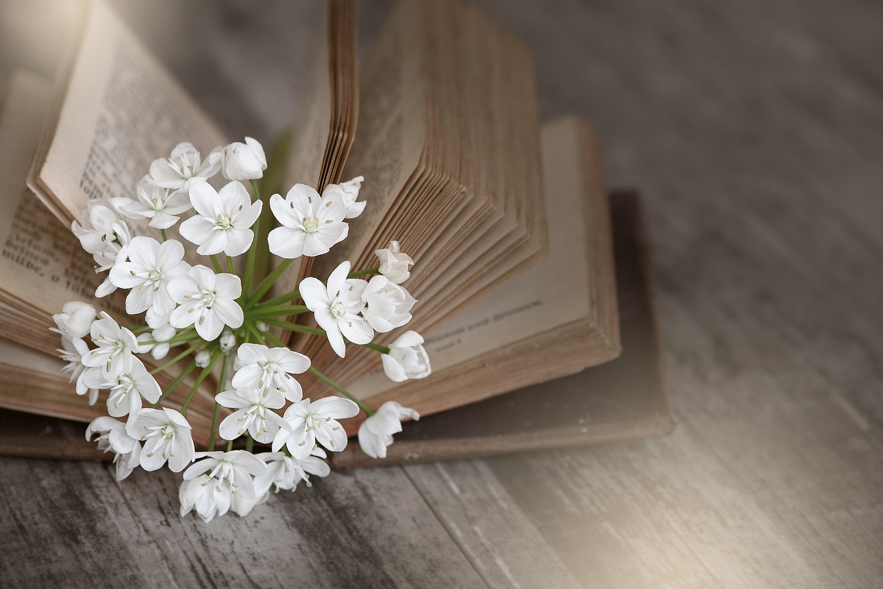 book-1356337_1280.jpg