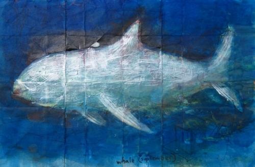Andrew Abbott,  whale