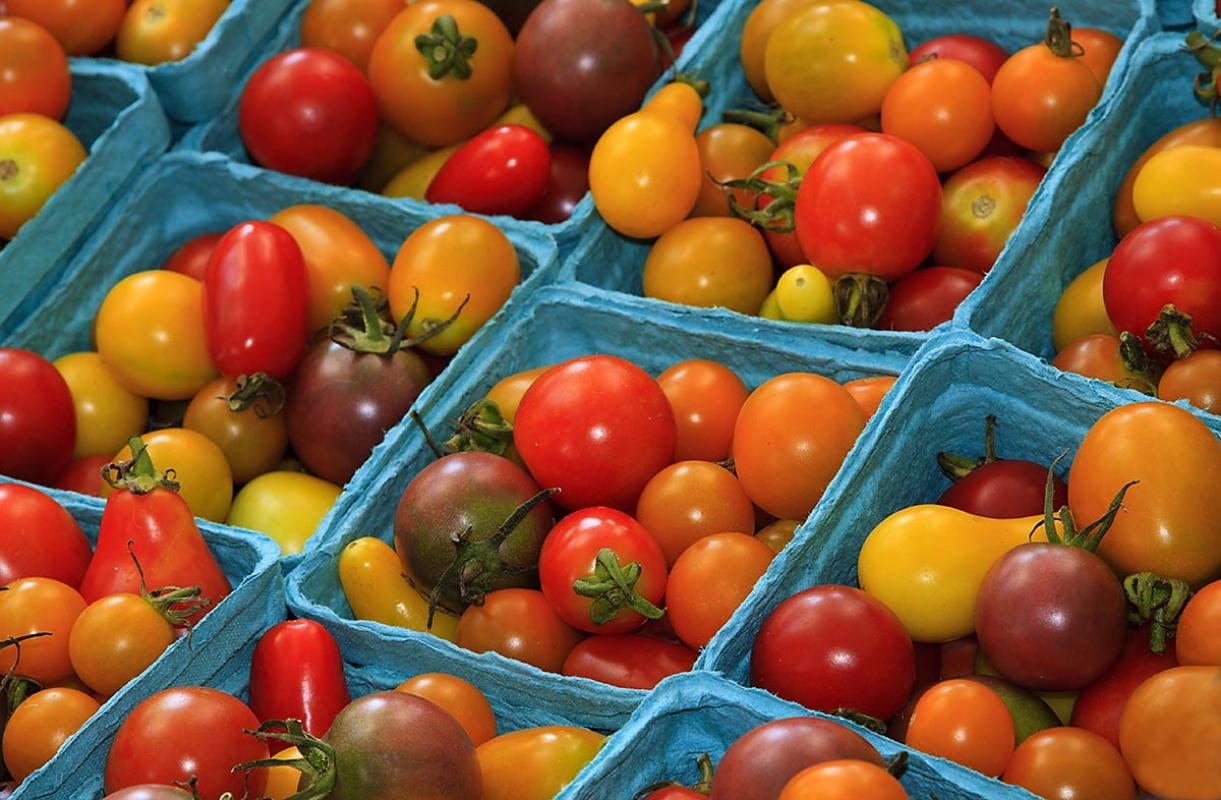 organic_tomatoes.jpg