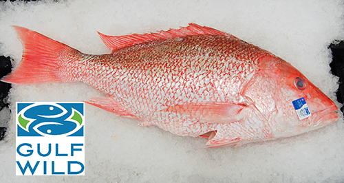 Snapper, Amer. Red