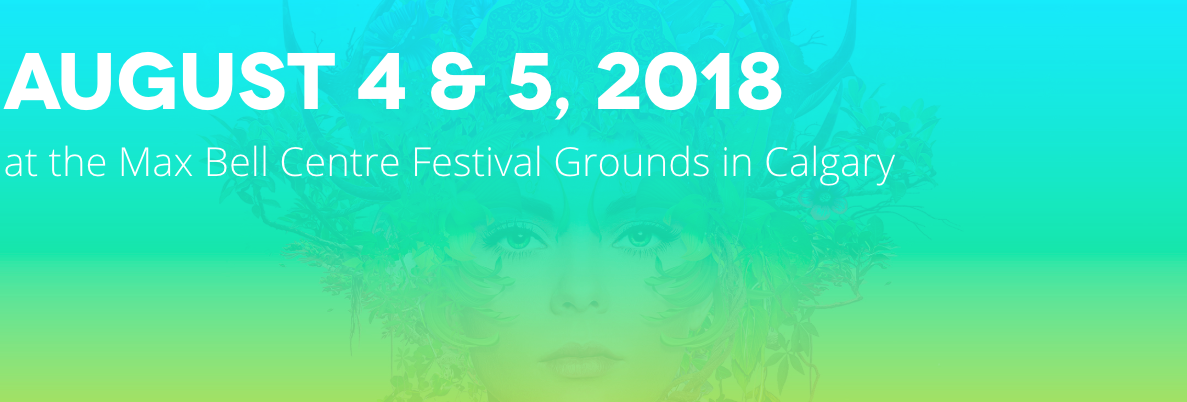 Chasing summer music festival 2018.png