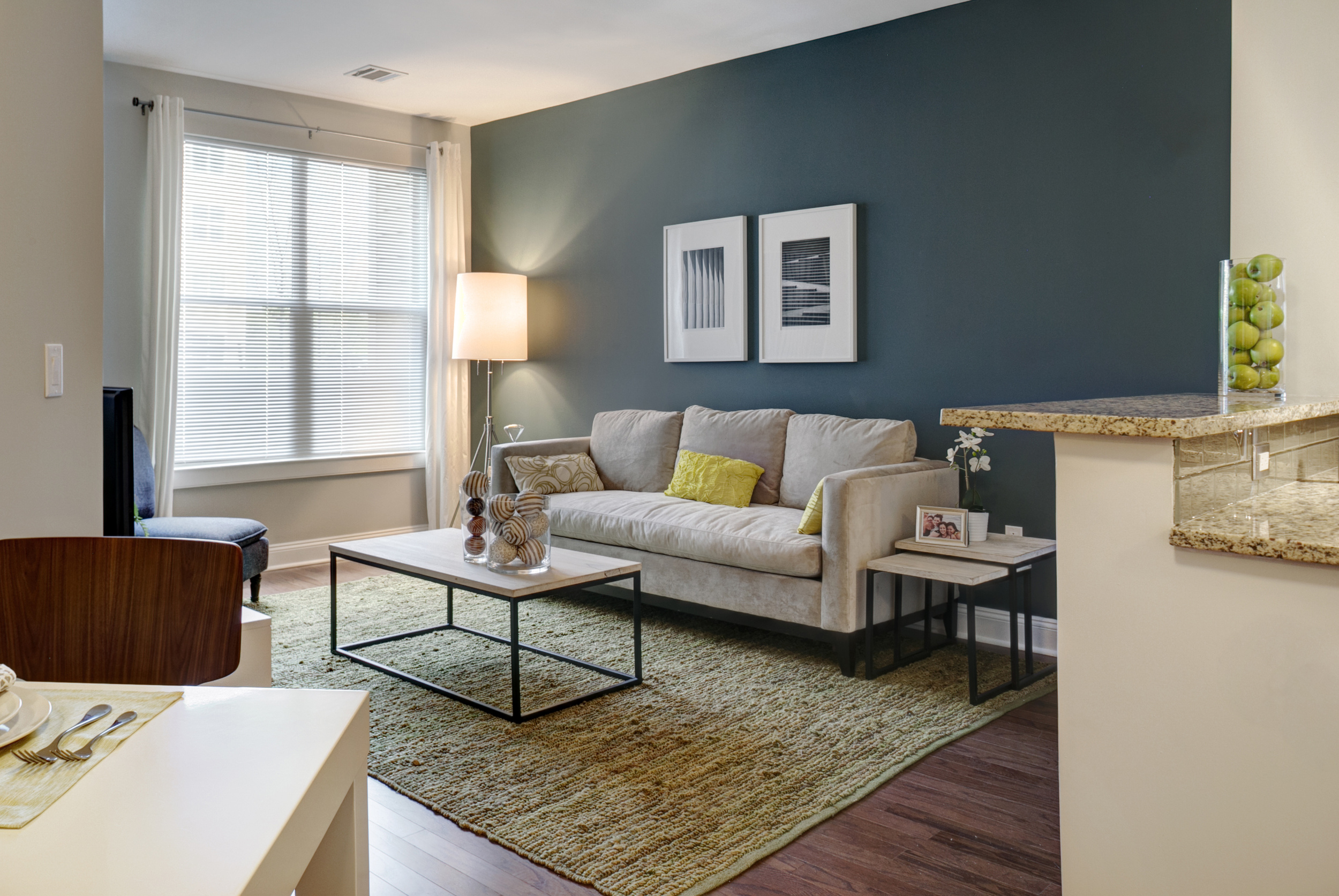 1 Bedroom Model Living Room.jpg