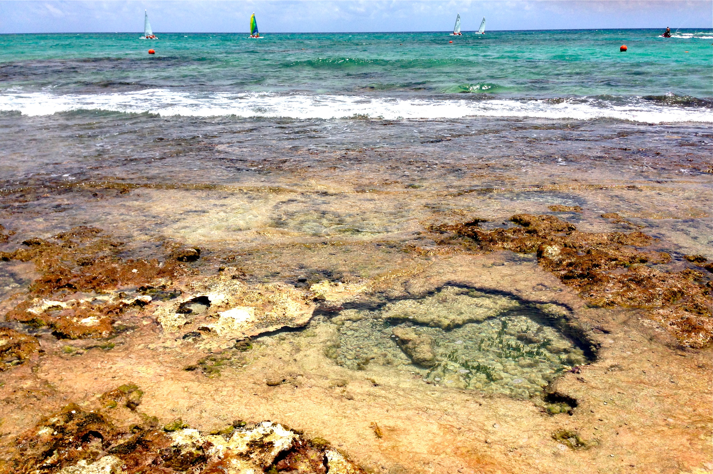 Turquoise waters and tide pools