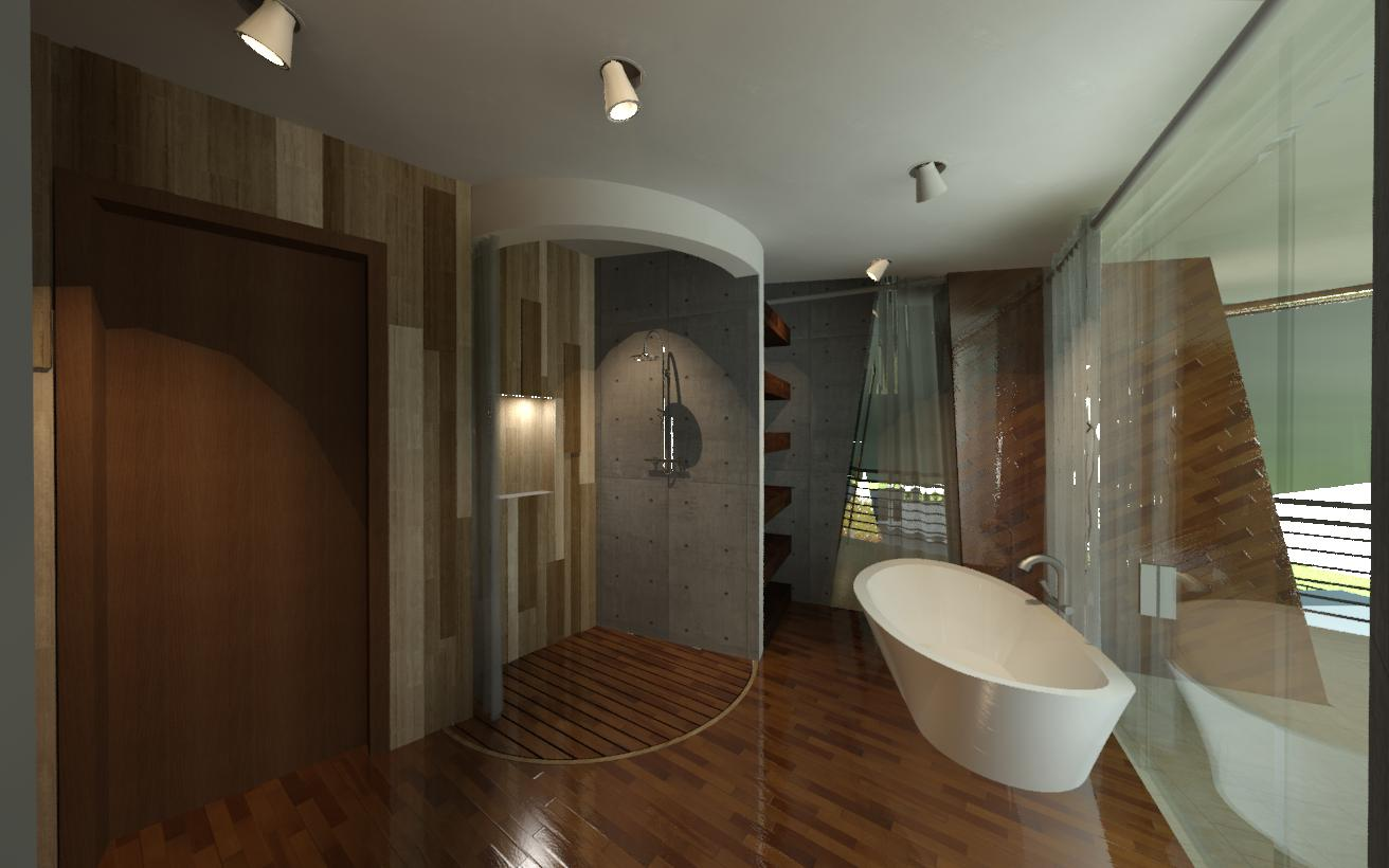 Master Bath View - Tub & Shower.jpg