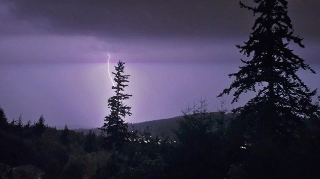 Last night's lightening storm was INSANE and something I've never experienced before. Over 1,200 strikes in 3 hours. It sounded like the world was being ripped apart in slow motion right in front of us. So amazing. 😍💜 . . . #lightening #lighteningstorm #bellingham