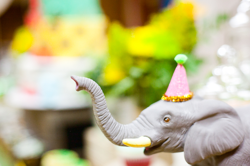 Safari Theme First Birthday Dohl Party Elephant Dessert Table.jpg