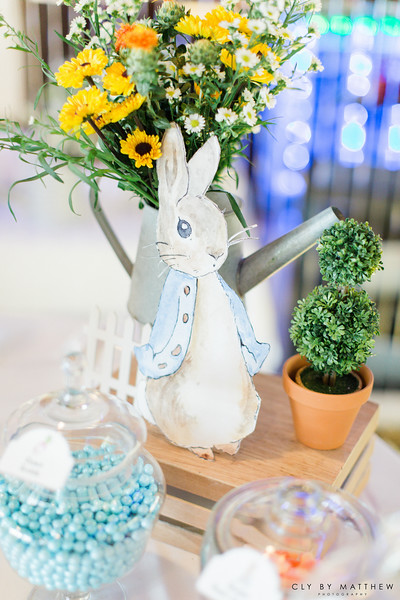 Korean First Birthday_Dohl_Events_Peter Rabbit Theme_Birthday Cake_Candy Buffet_Dohlsang.jpg