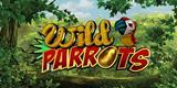 thm_Wild Parrots_Logo Belly_Cadillac Jack.jpg