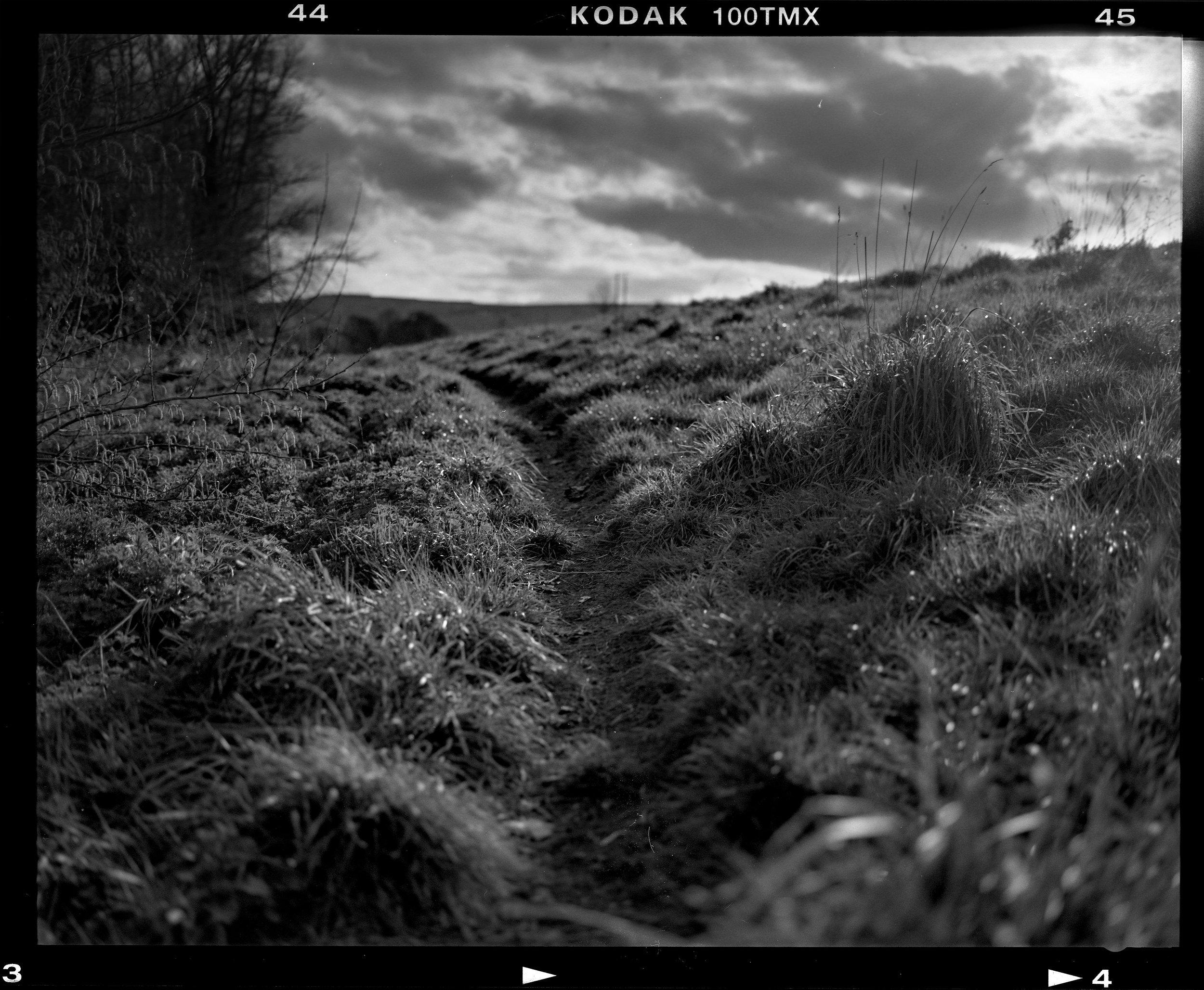 Kodak T-Max 100_2_008.jpg