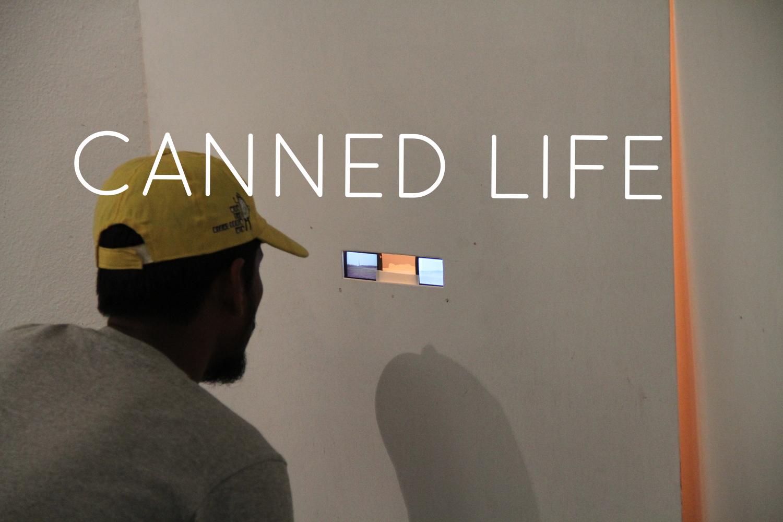 Video installation for Reflections Gallery, Shapur Jat, Delhi