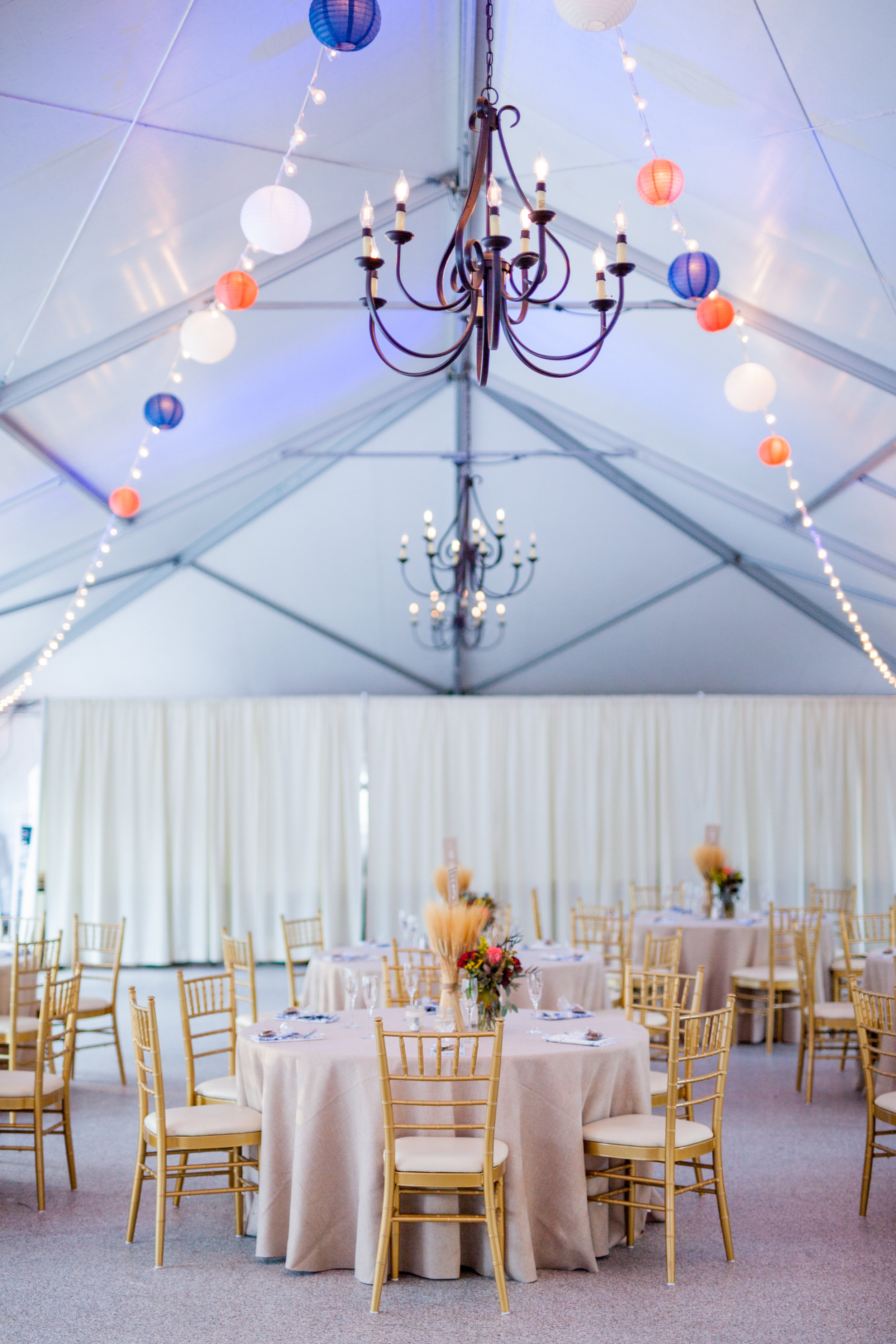 Wedding Reception at Rust Manor in Leesburg VA