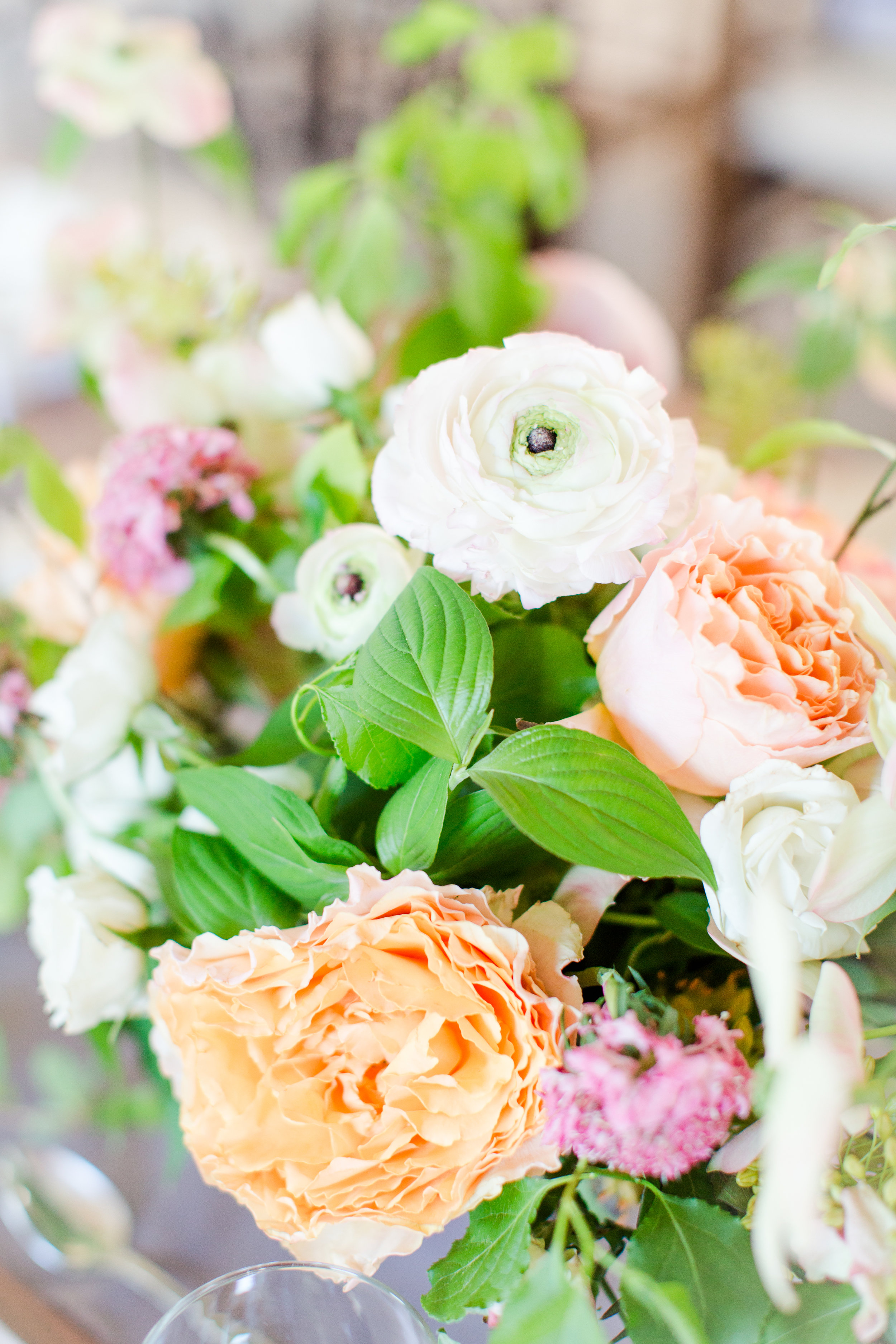 White Ranunculus and dogwood