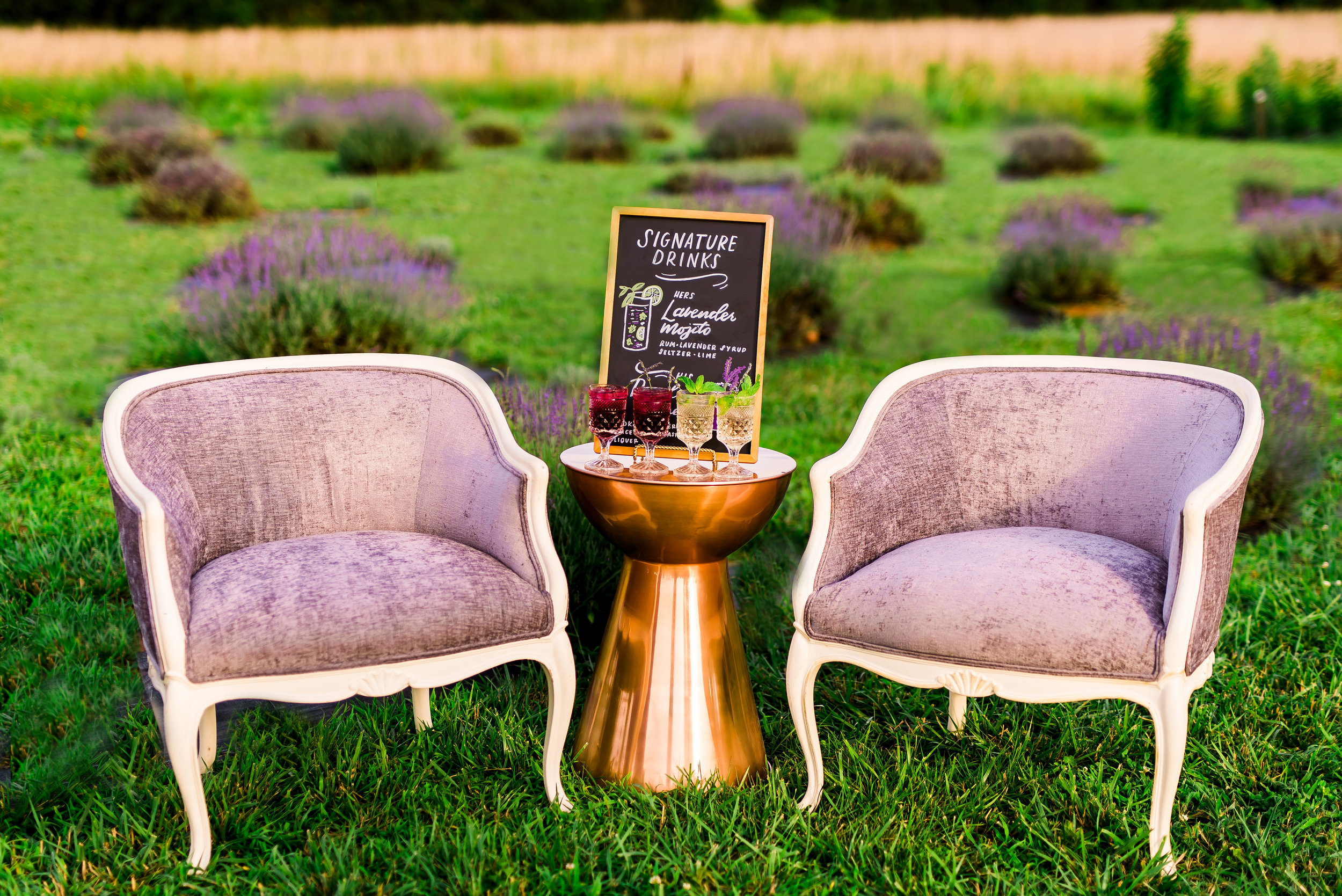 Lavender Chairs for Rent