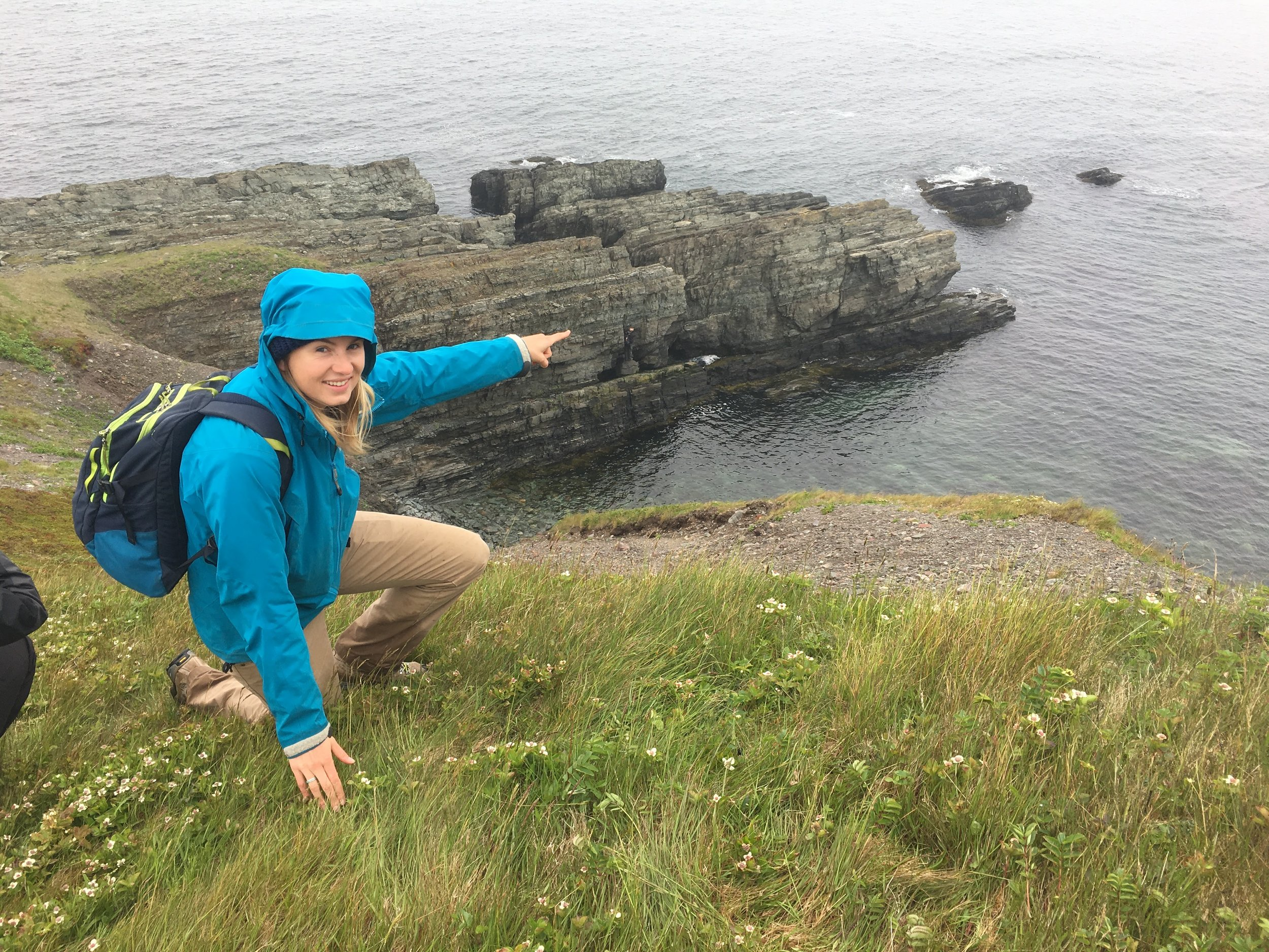 The Cambrian GSSP at Fortune Head, Newfoundland