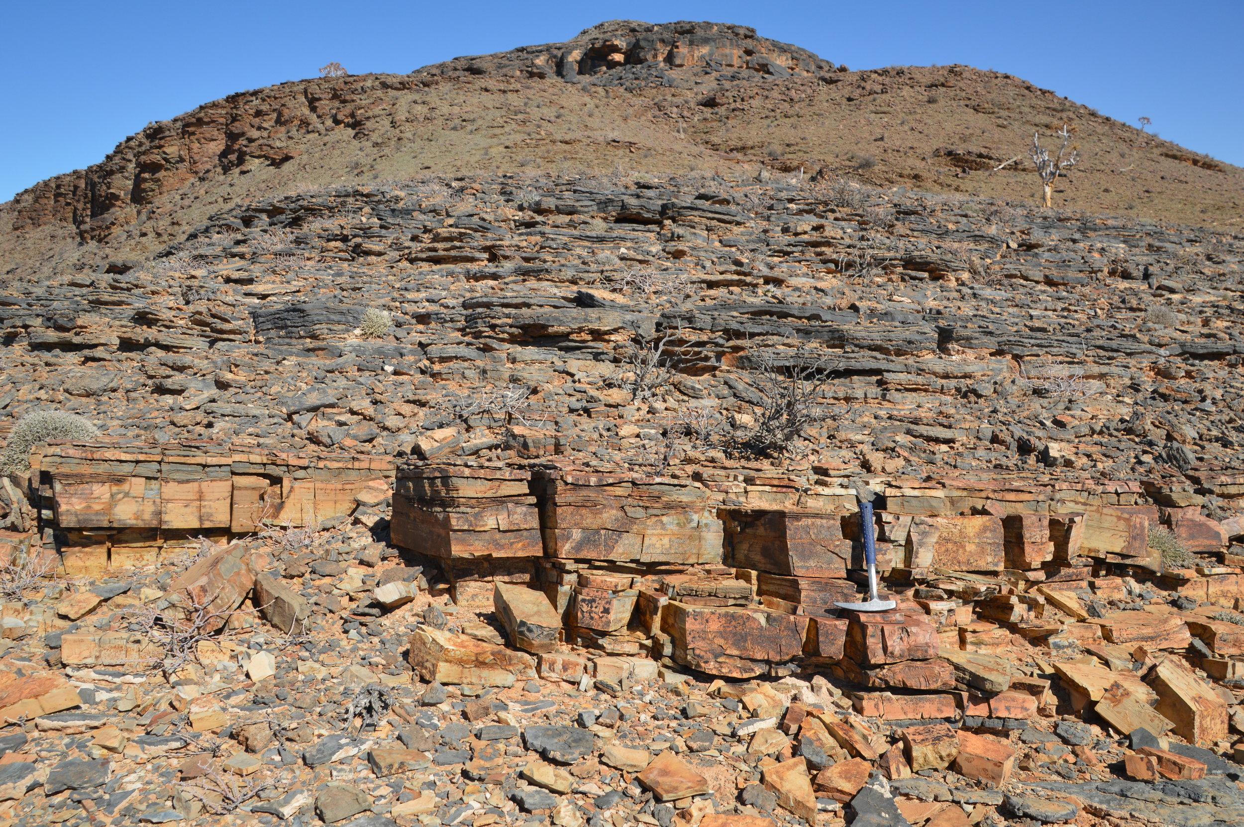 An Ediacaran ash in Namibia