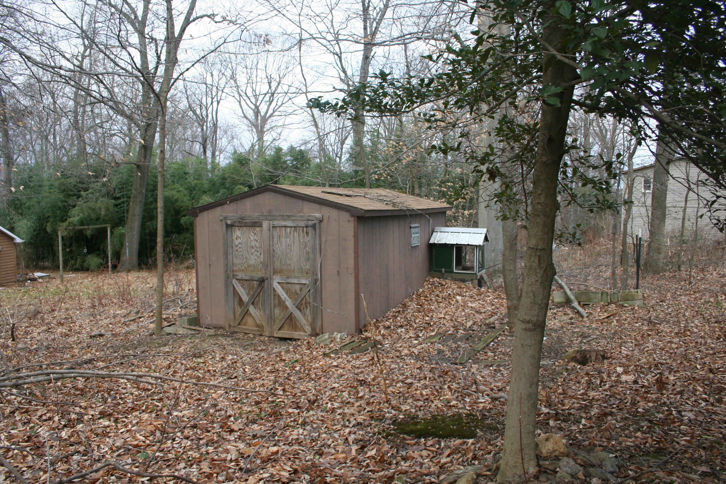 Another shed on the property.