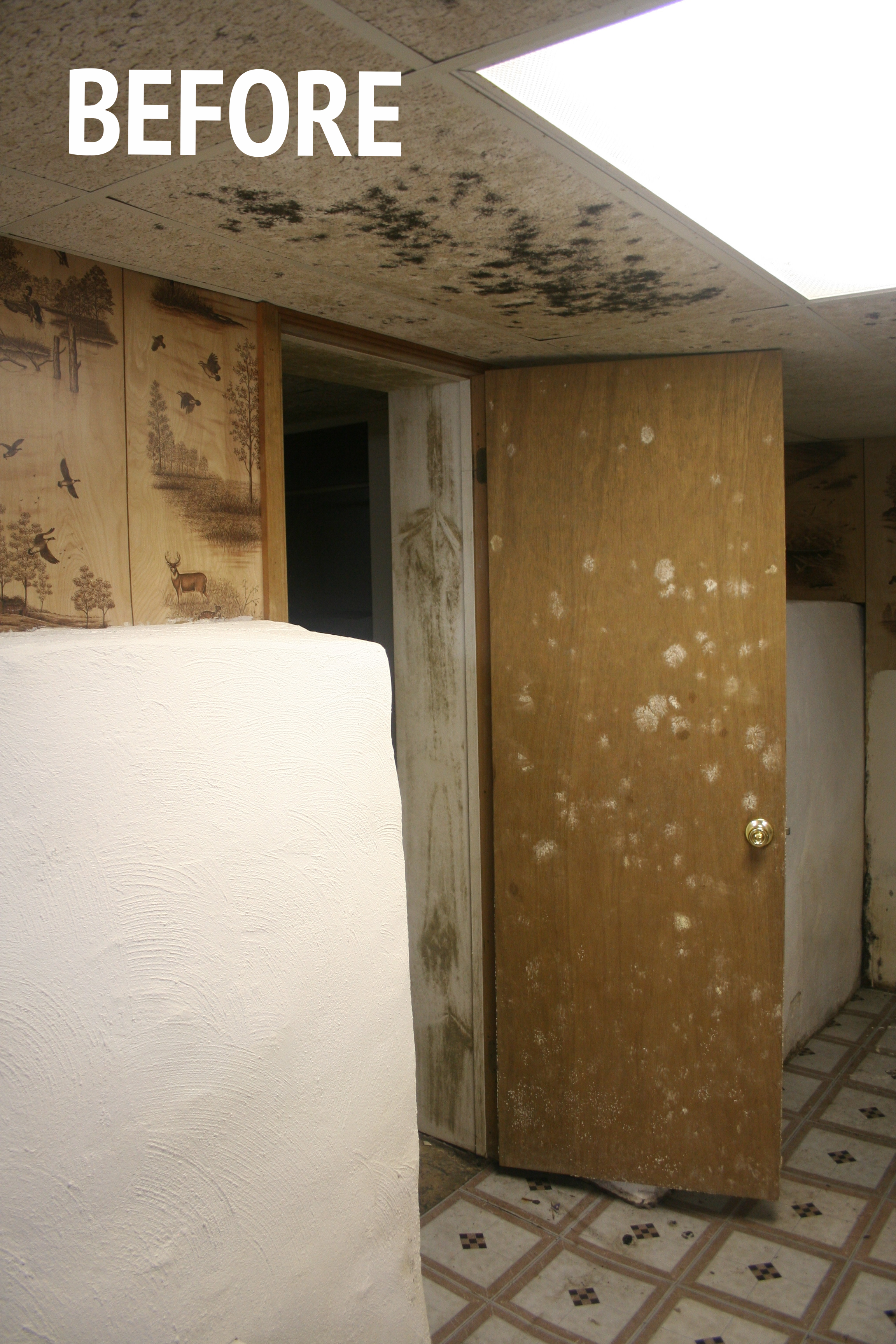 How To Remove Mold & Mildew From Walls - Stevie Storck Design Co.