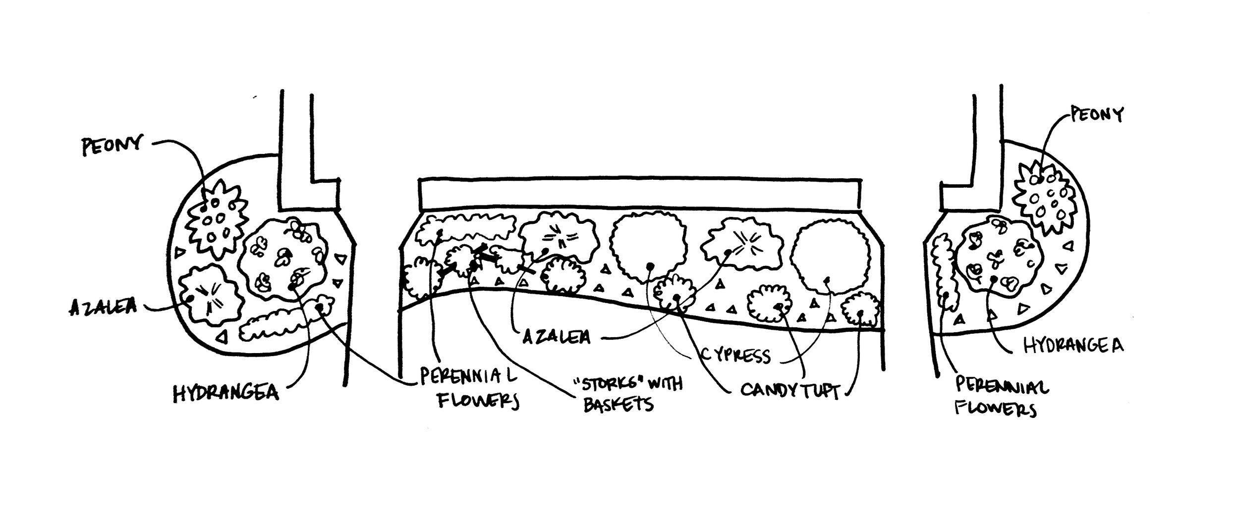 Front Garden Plan - Stevie Storck Design Co.