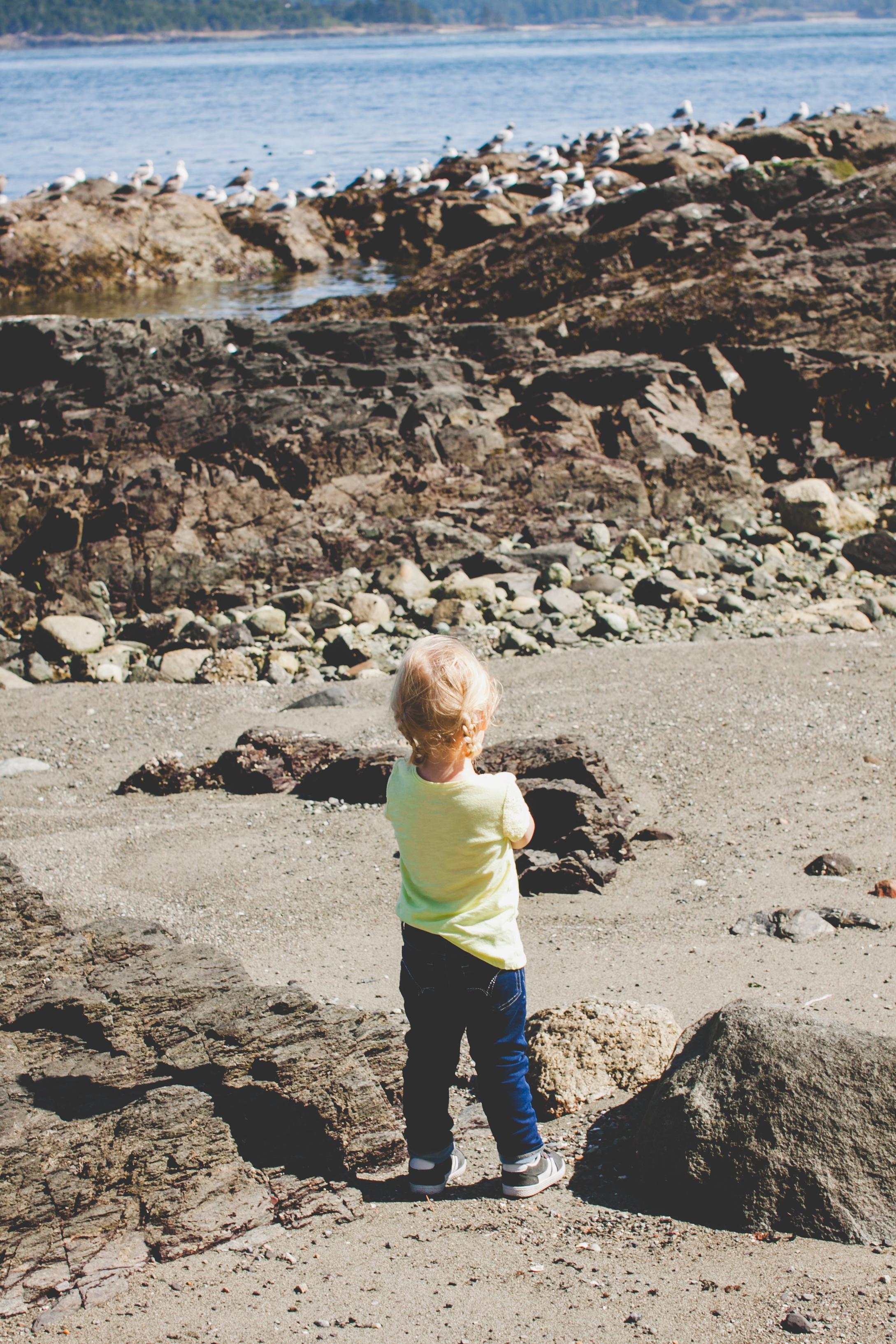 Beach-37.jpg
