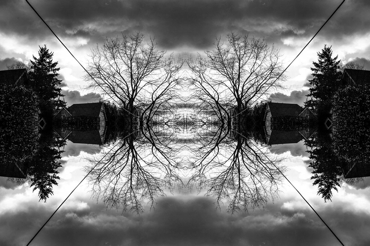 mirrored_4.jpg