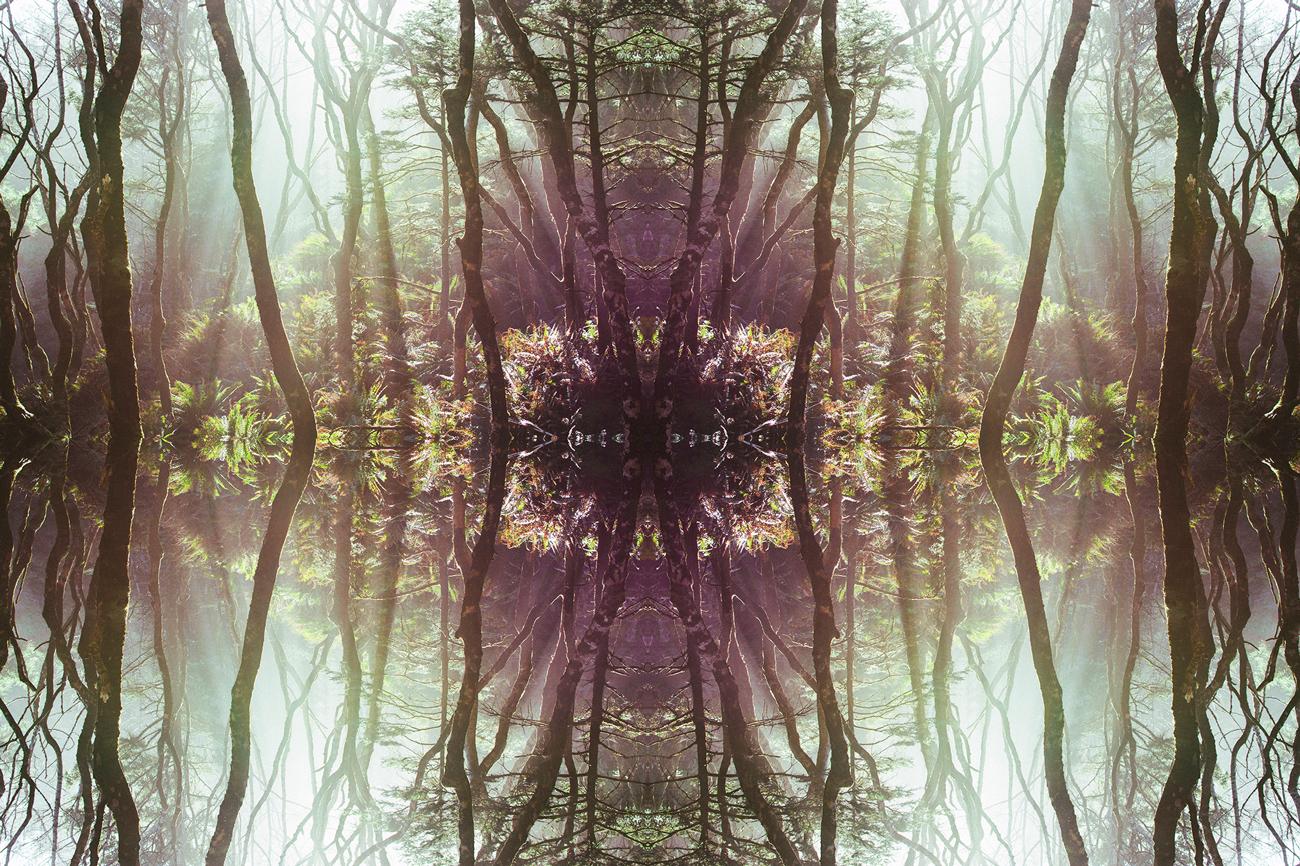 mirrored_8.jpg