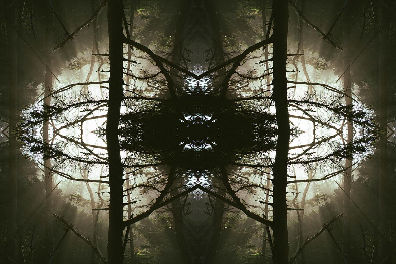 mirrored_9.jpg