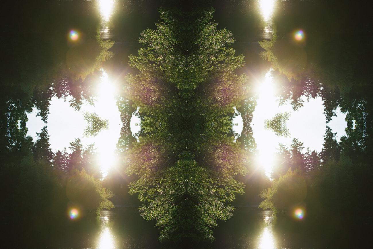 mirrored.jpg