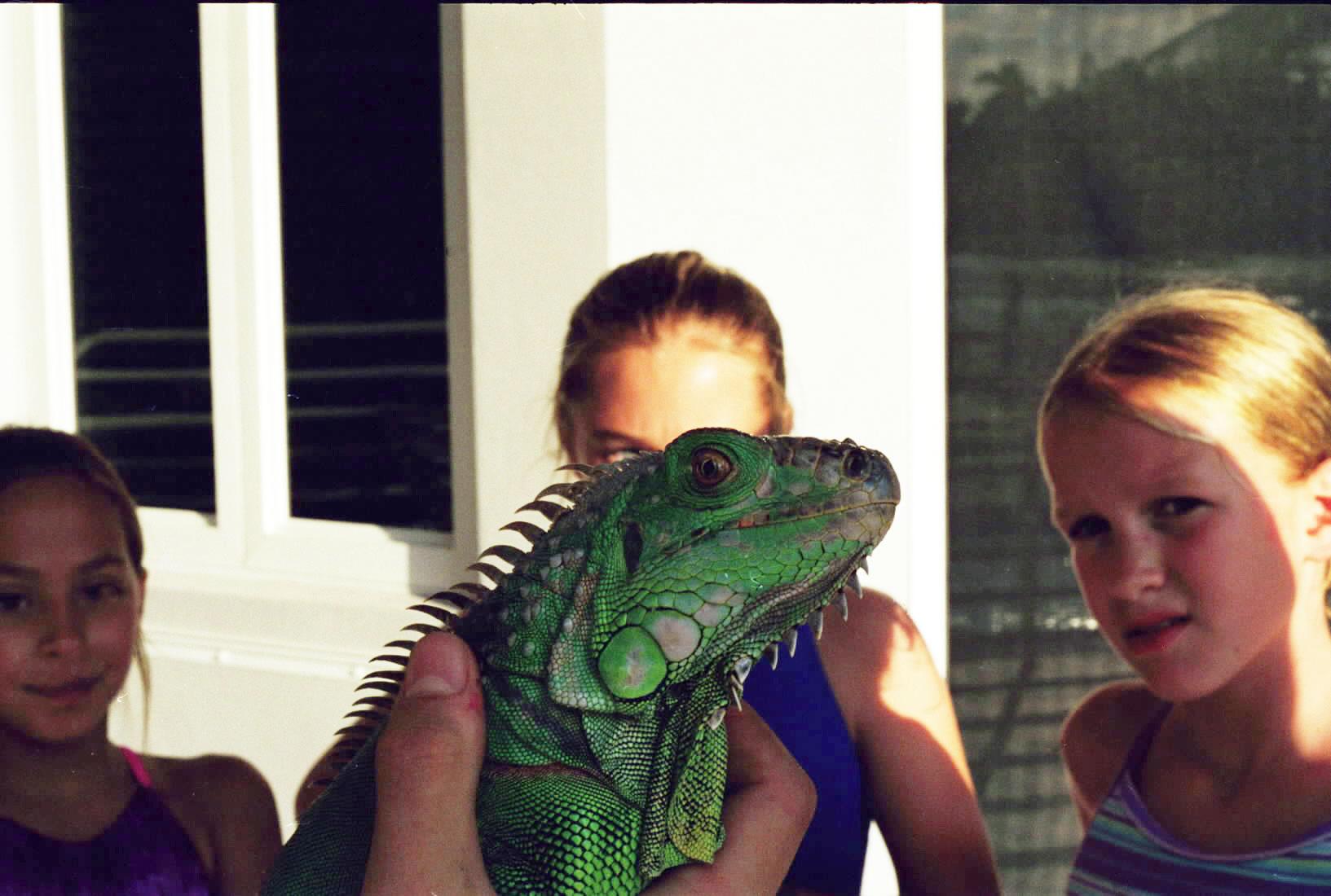 The Eye of the Beast, SMKM, Miami Beach, 2001