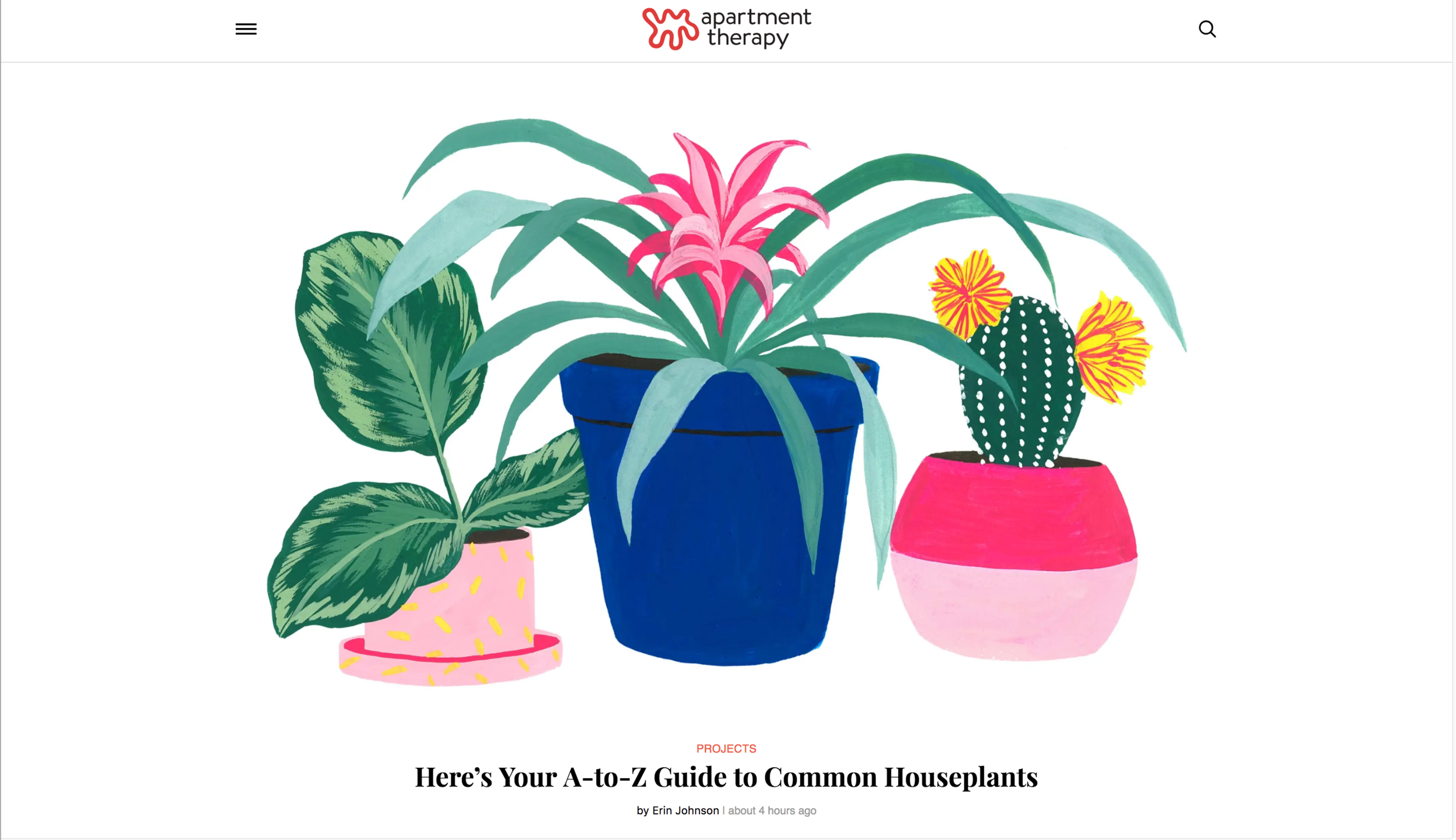 A-Z guide to houseplants