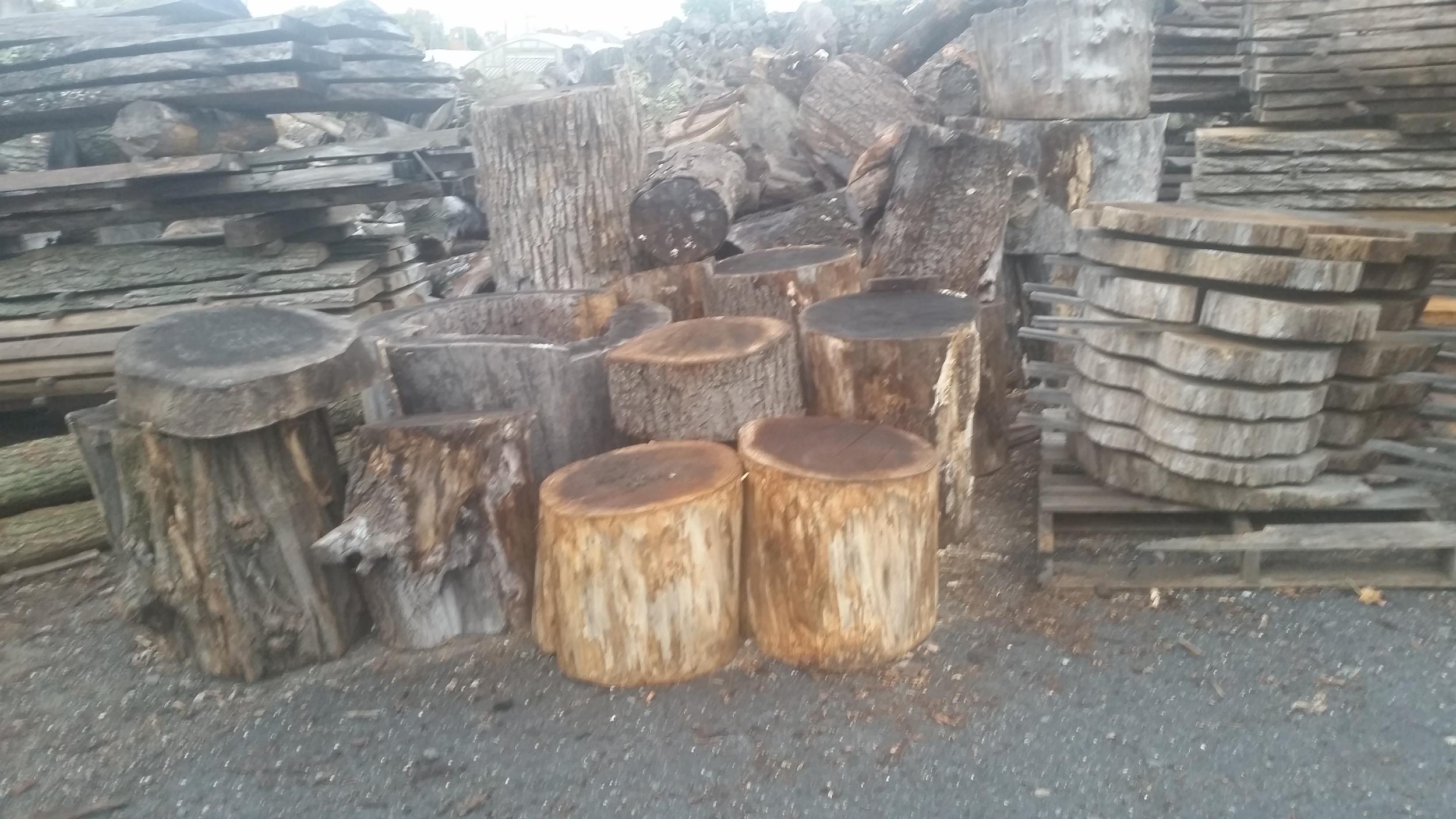 Stumps 12.jpg