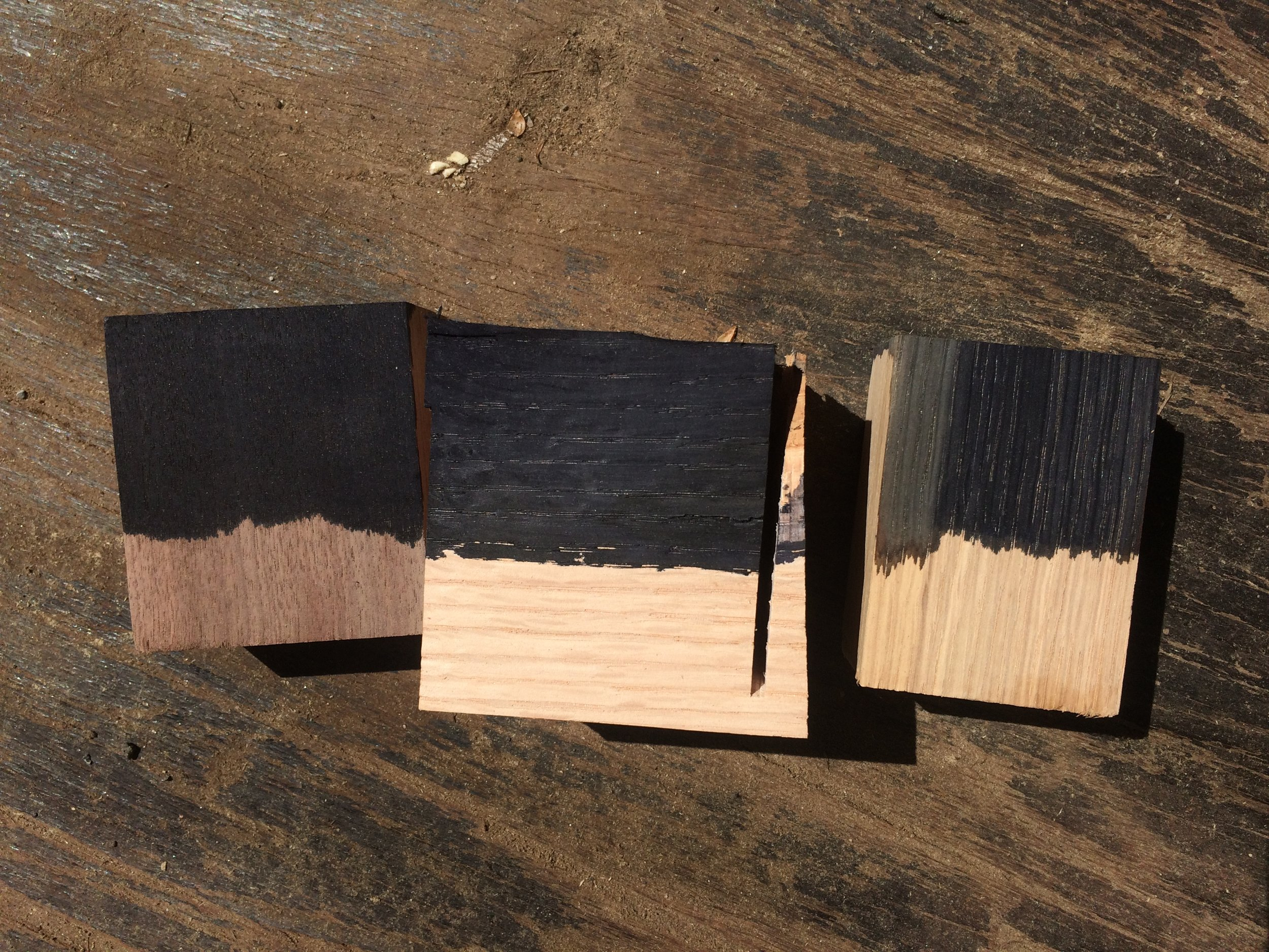 Close up of walnut and oak samples.