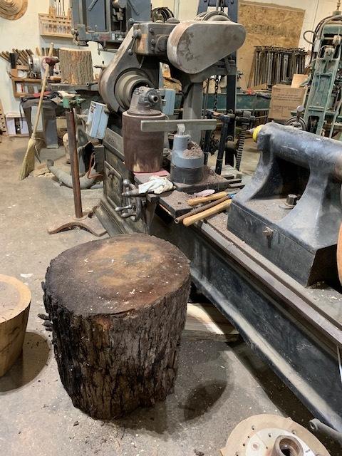 Black Walnut Stump