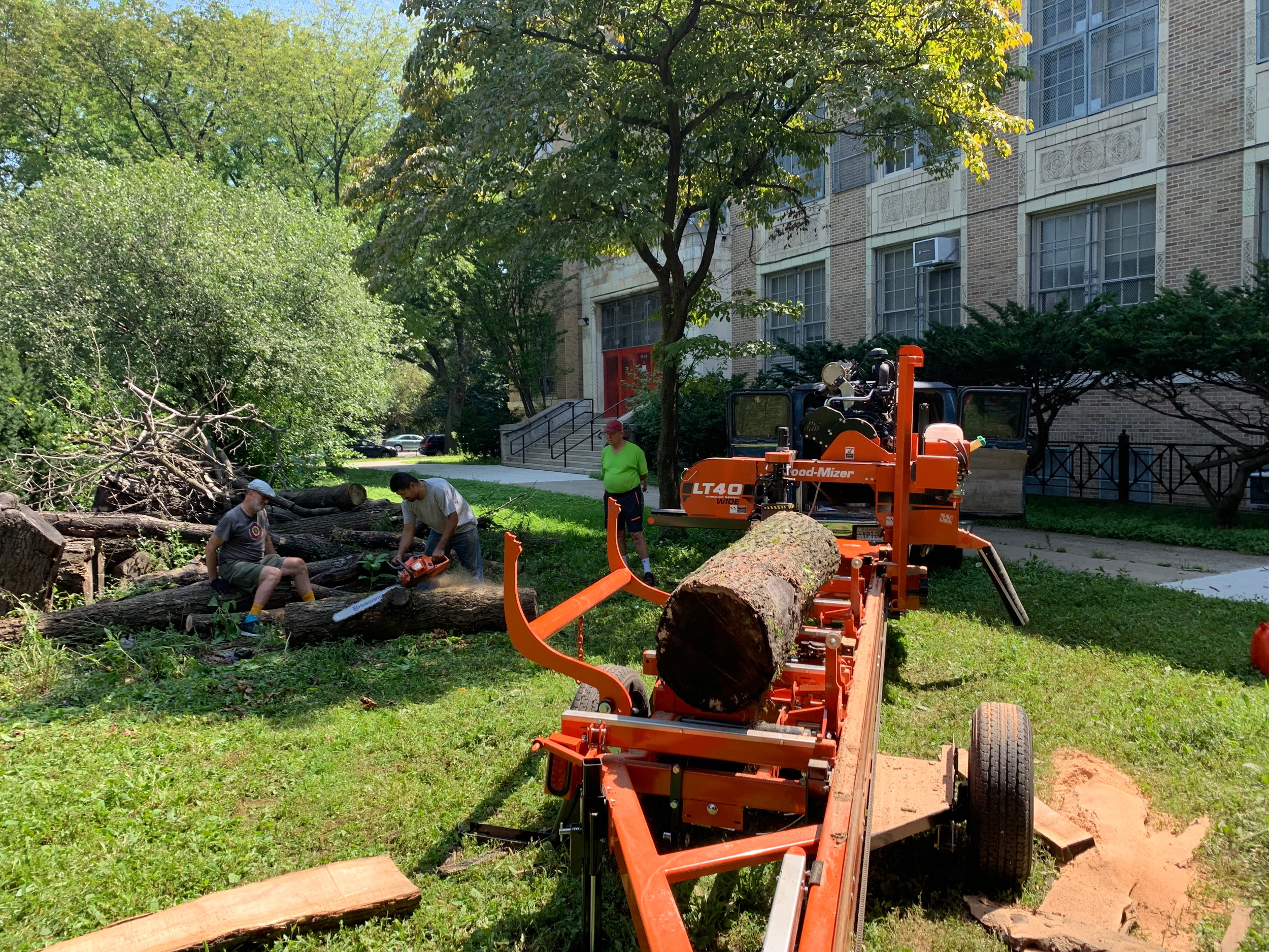 DeWitt Clinton High School in the Bronx - There is a community Garden group that saving the fallen trees.