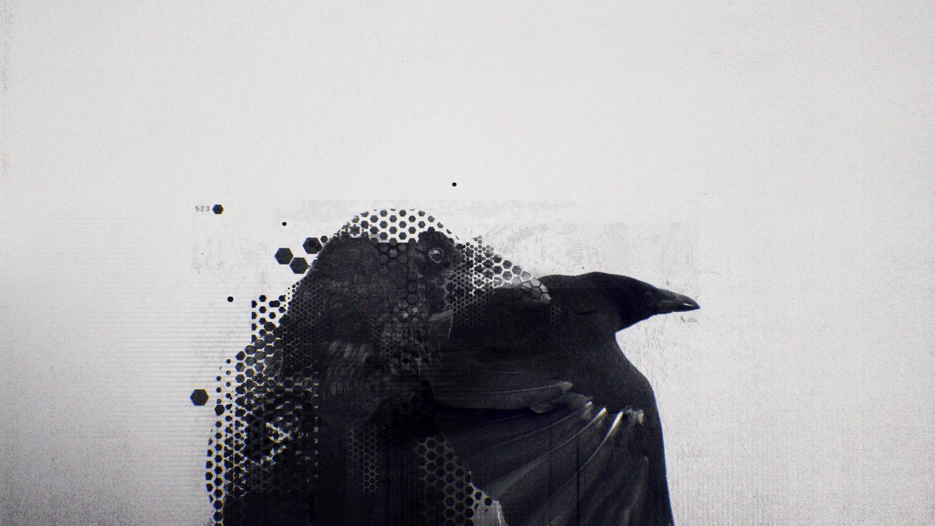 Raven_logo_v002.jpg
