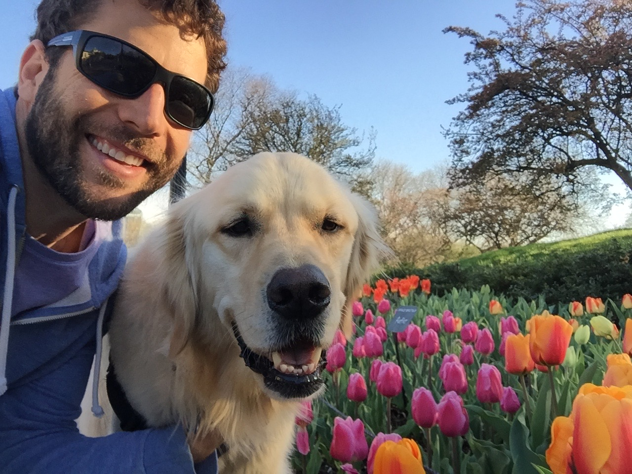 Considering adding a dog, or other suitable animal, to assist with your mental health and wellness? - Go Fetch Wellness wants to be on your team, helping you navigate the overwhelm of options, understand the different types of working animals (emotional support vs service animals), set you up with carefully selected local resources, all while building your