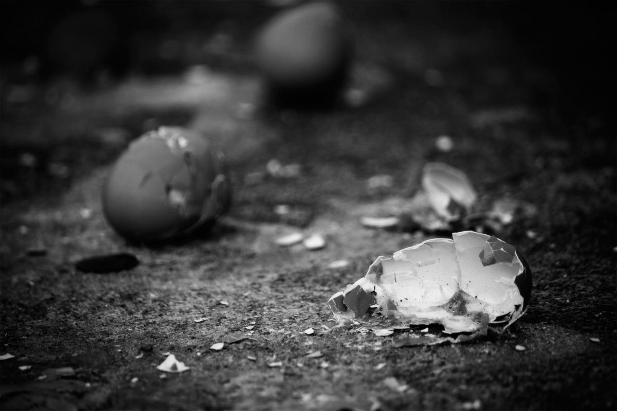 """Barbara Krawcowicz, """"Drop Dead"""" 2013"""
