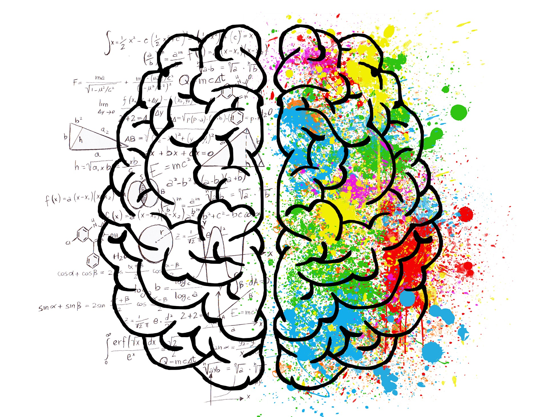 a depiction of the right and left side of a brain, where the right is covered in science and math equations and the left is covered in bright splotches of color.