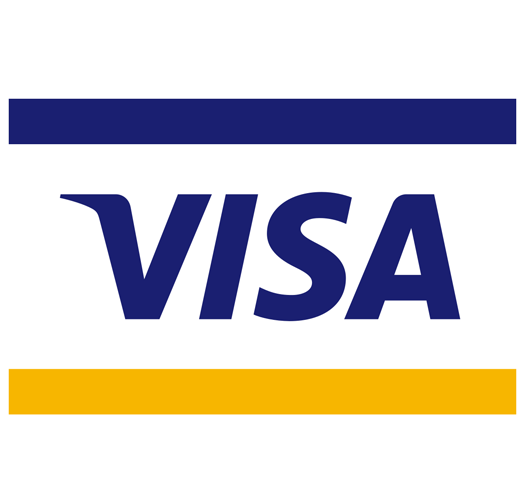 Visa Website.png