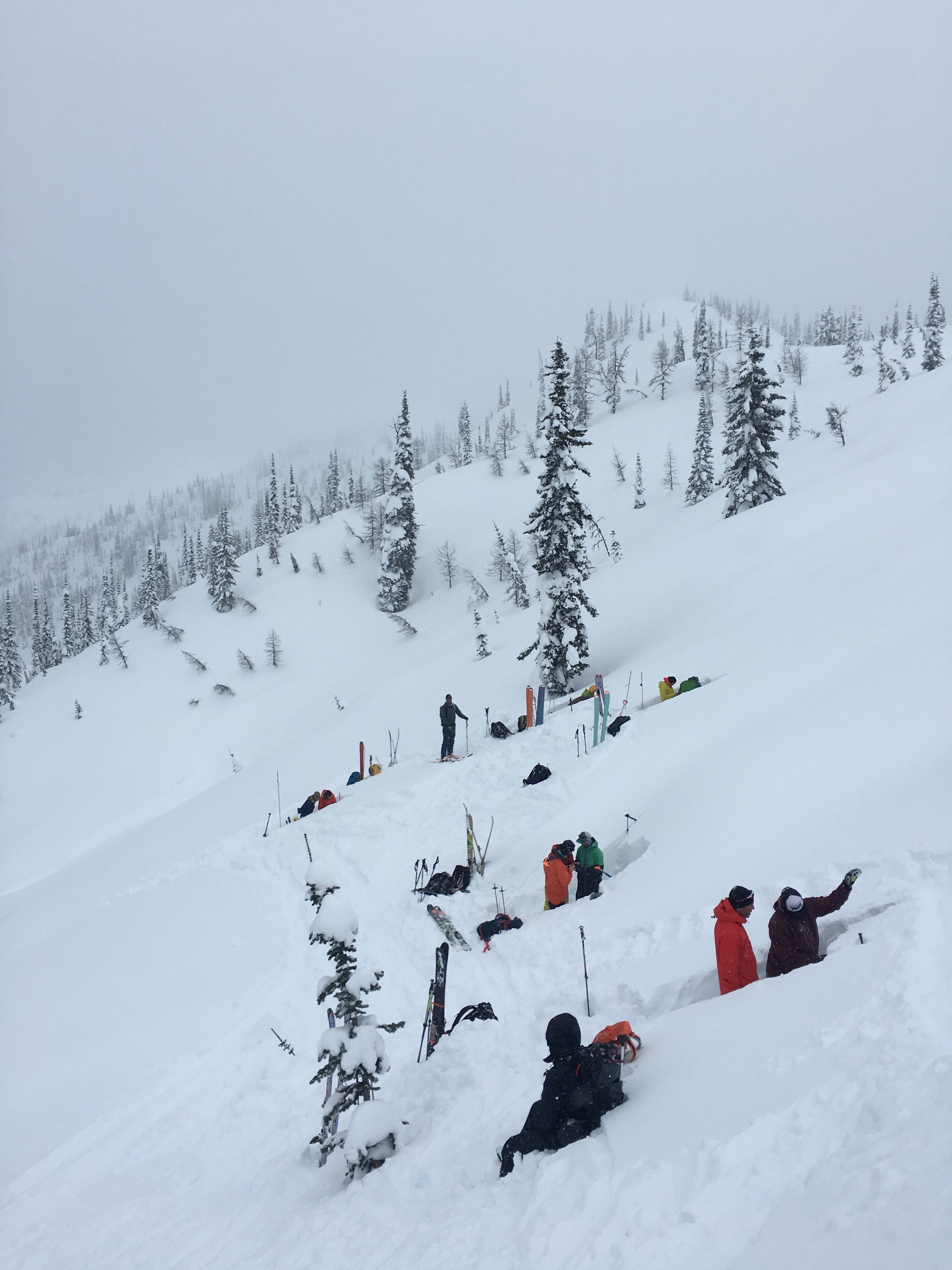 Students practicing their snowpack tests and pit skills at Ymir Lodge, 2018.