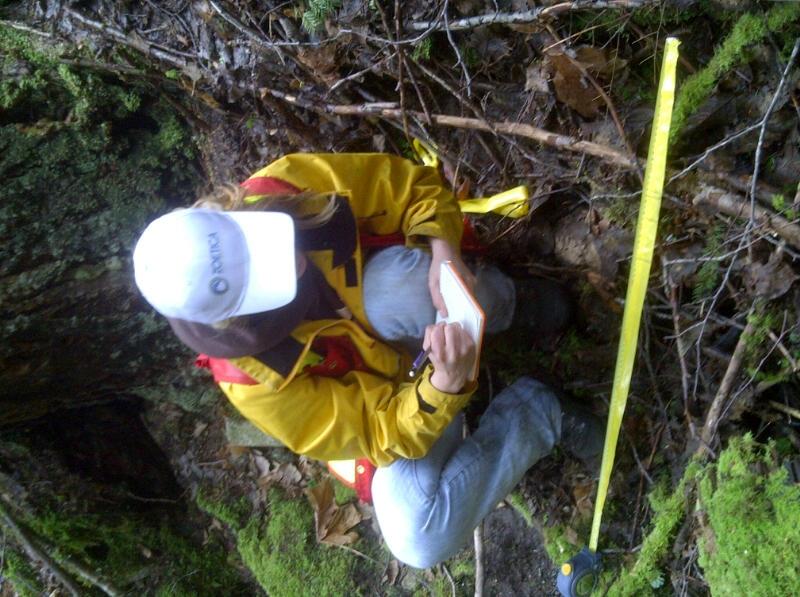 Squamish-Lillooet D-20110601-00069.JPG