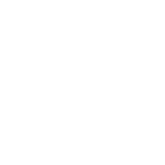 PITA PIT INTERNATIONAL