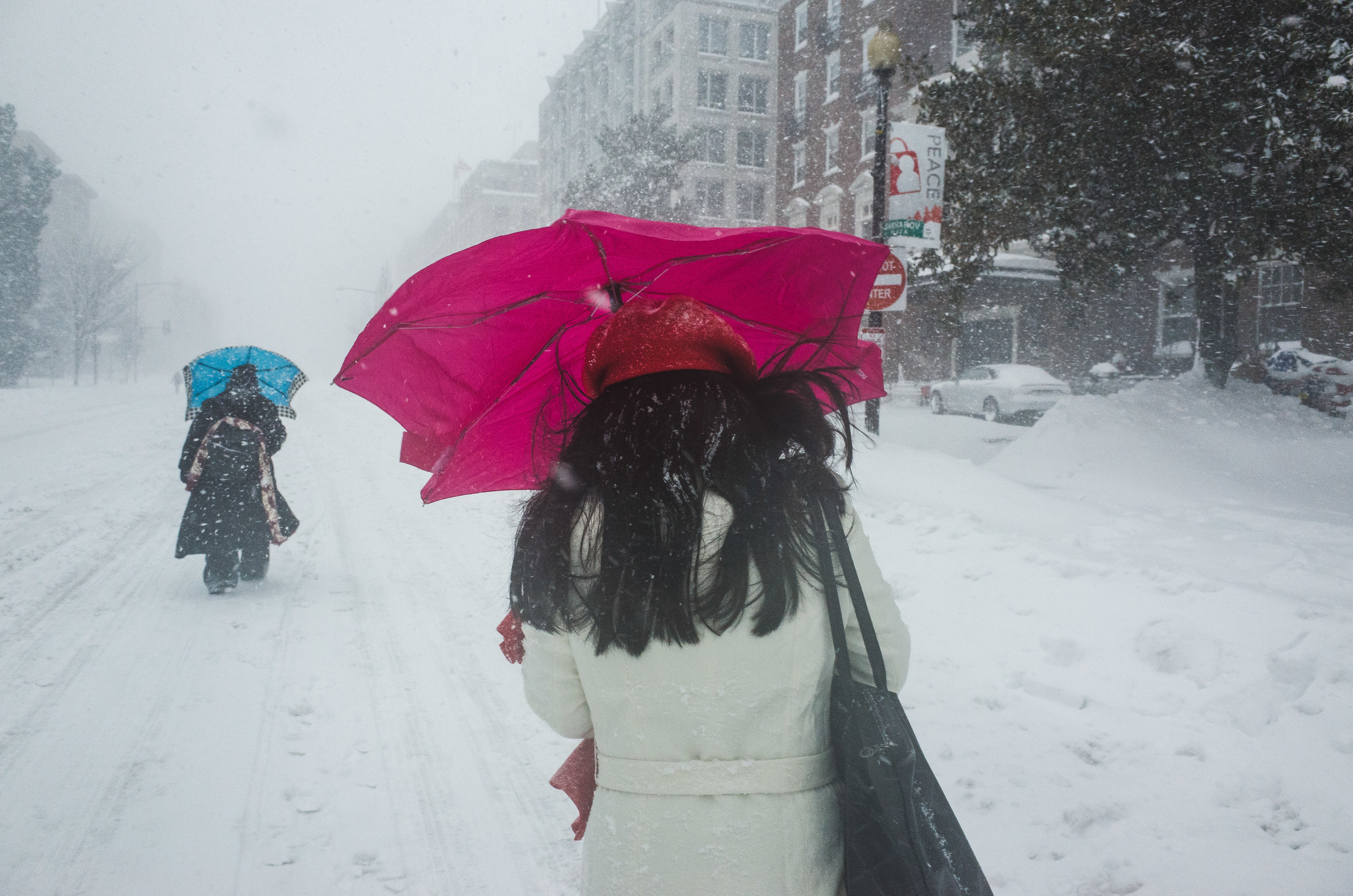 Blizzard Jonas Washington DC 2016 Photographer Mantas Kubilinskas-21.jpg