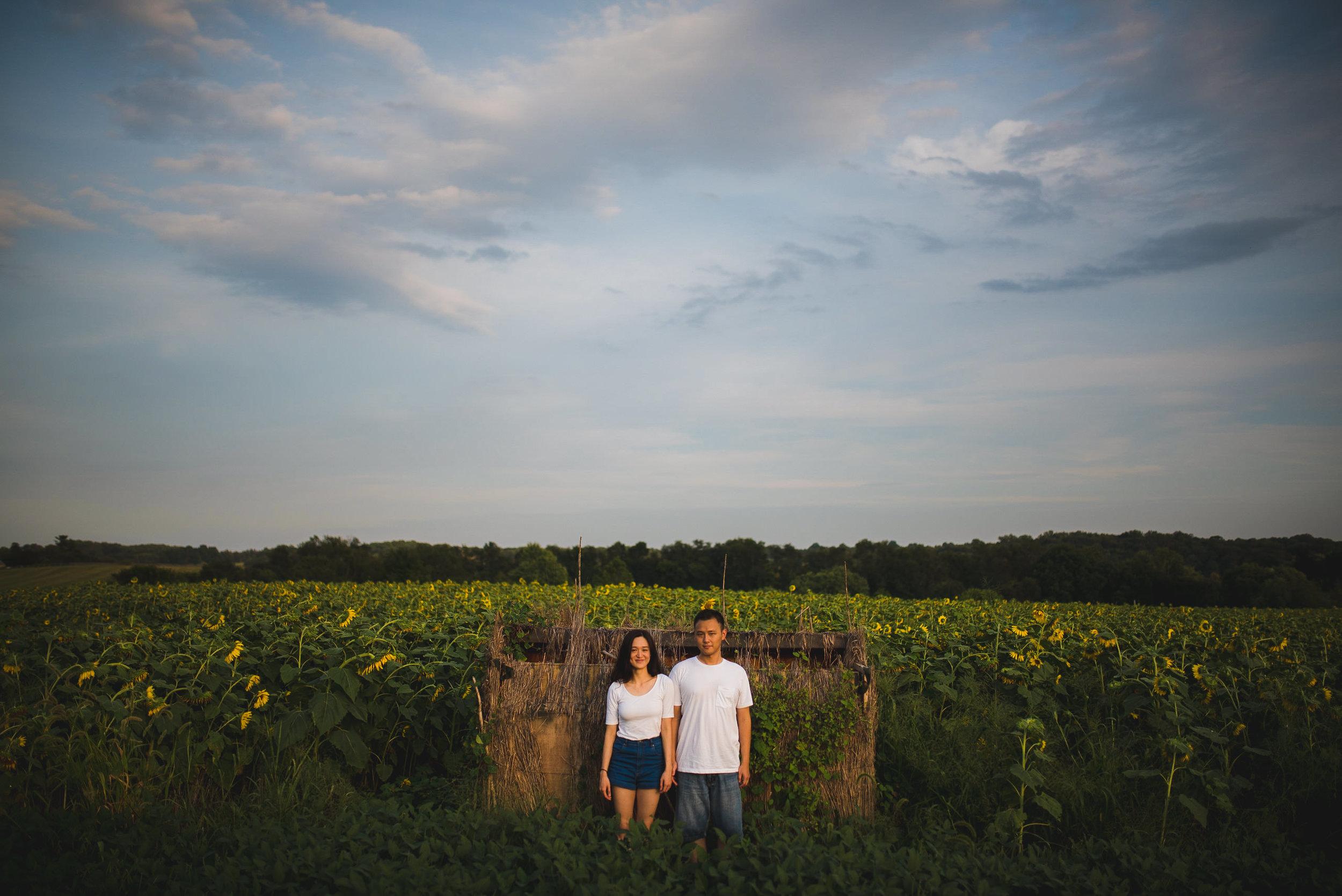 Sunflower Field Maryland Engagement Photographer Mantas Kubilinskas-7.jpg