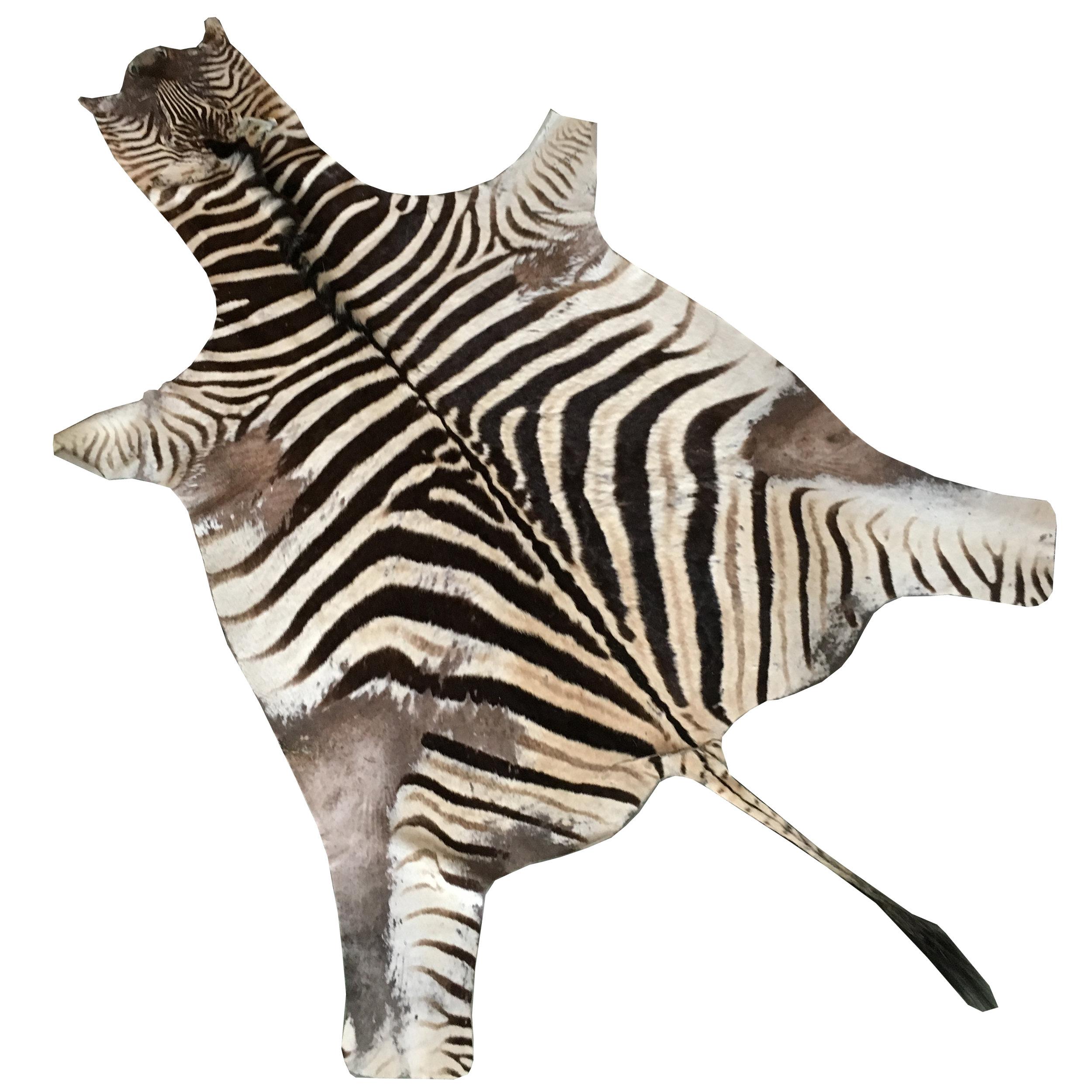 Zebrafell -