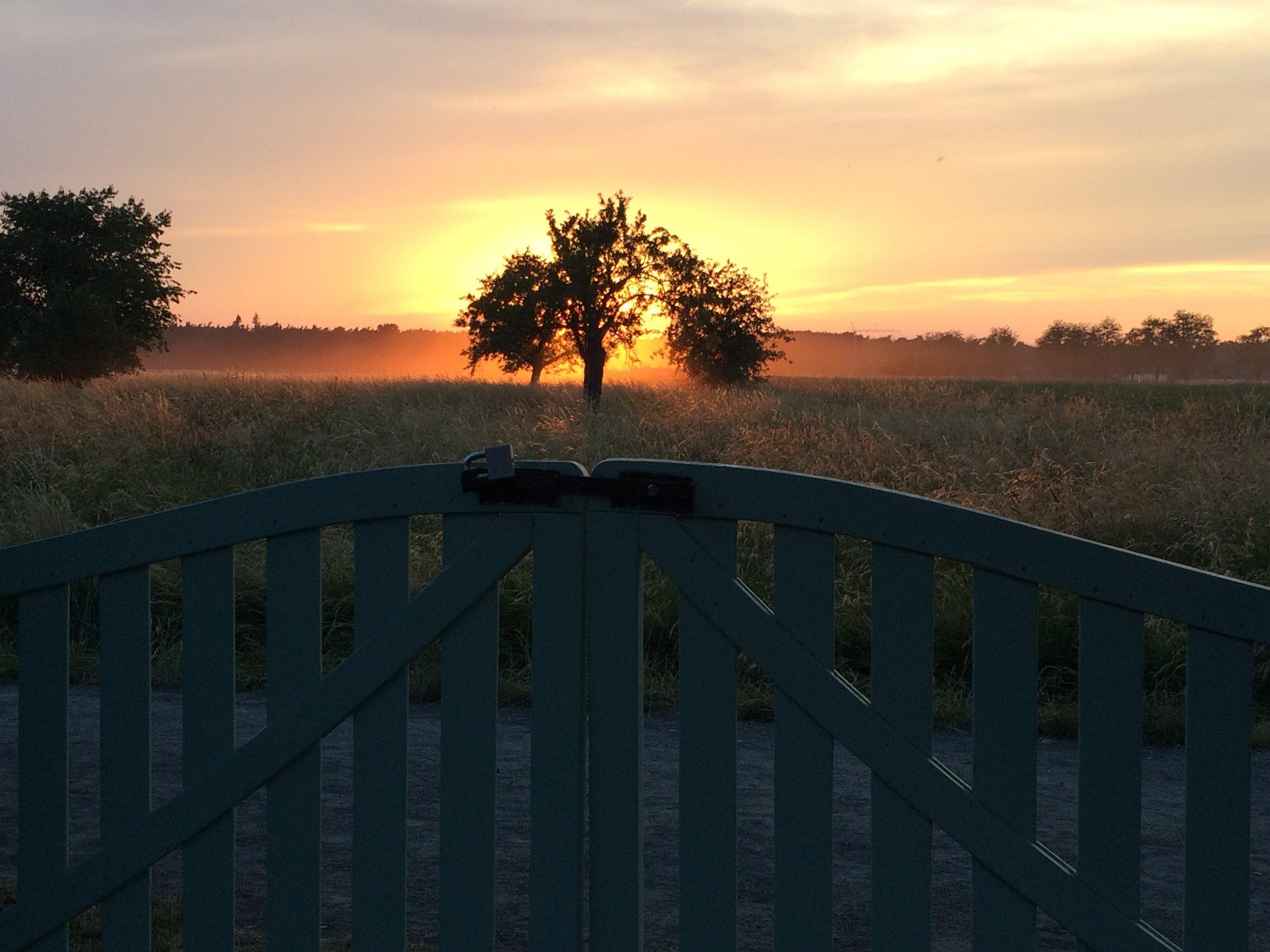 Sonnenuntergang Tor.JPG