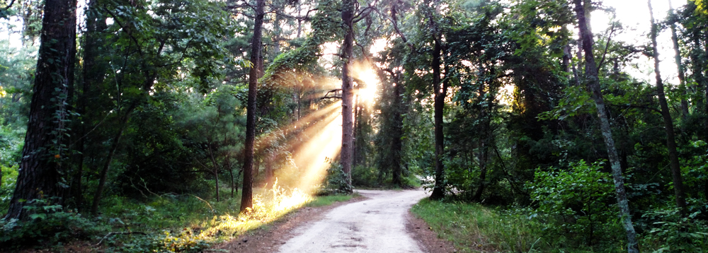 Deer Lake Ranch Resort Trails.jpg