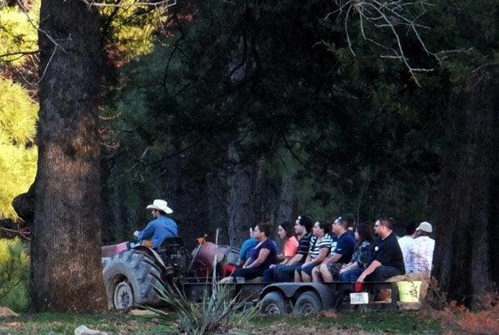 Hay Rides - Get an authentic tour of the ranch as we see the sights.Only $10/Adult and $8/Child