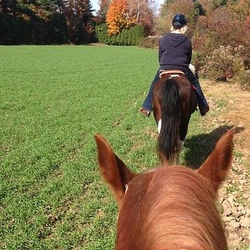 Horseback Riding -